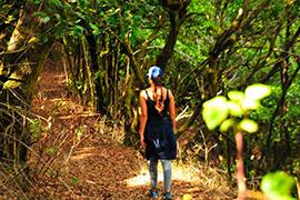 alojamiento en ólvega hostal gargal turismo agreda soria moncayo